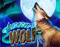 Aurora Wolf