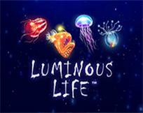 Luminous Life